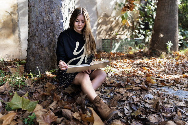 Full body of peaceful stylish female teenager with long hair in casual outfit sitting near tree amidst fallen trees and reading interesting book in autumn park