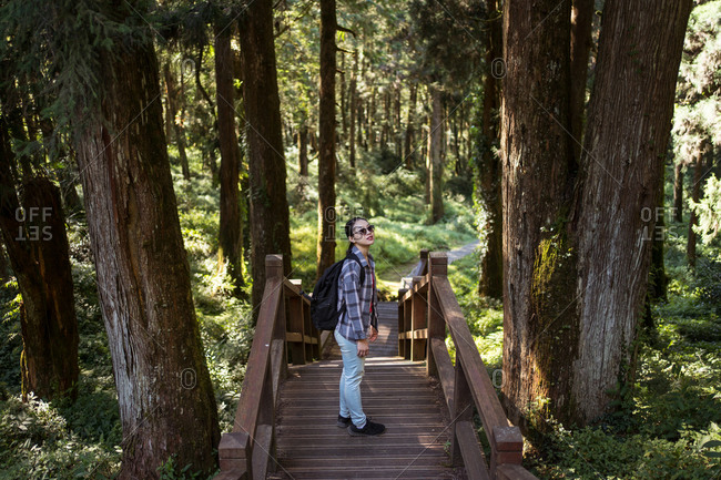 From above side view of young ethnic female tourist standing on wooden bridge in green forest looking away o sunglasses during vacation in Alishan Township