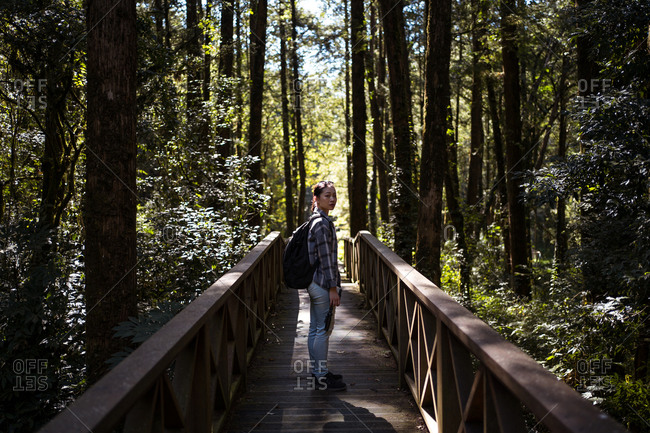 Side view of young ethnic female tourist standing on wooden bridge in green forest looking at camera during vacation in Alishan Township