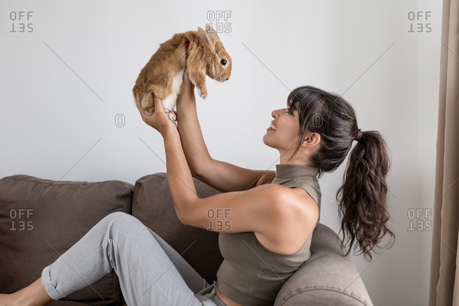 Side view content slim female in casual outfit resting on comfy couch and stroking cute little rabbit during daytime