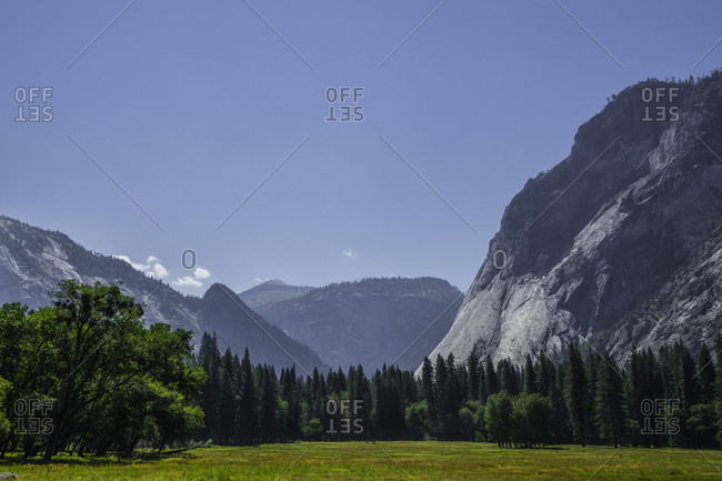 Breathtaking view of rough mountain peak and coniferous woods on sunny day in Yosemite National Park in California