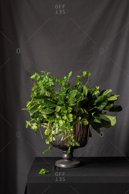 Bunch of aromatic fresh spinach and parsley placed in vase with water on table in studio