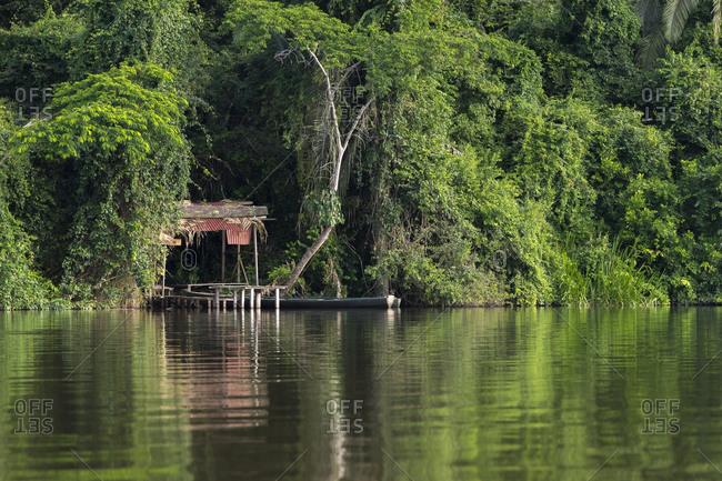 Small jetty in peruvian rainforest on lake sandoval, tambopata nature reserve, puerto maldonado, madre de dios region, peru