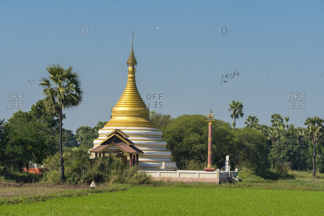Pagoda amidst rice fields against clear sky, inwa, mandalay, myanmar
