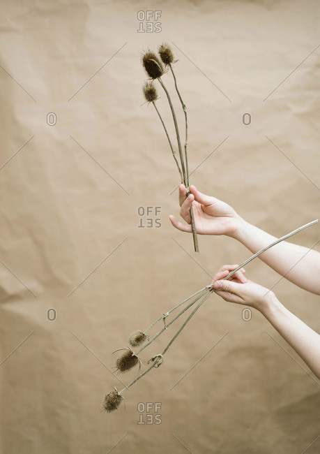 Woman  holding flowers  on beige background