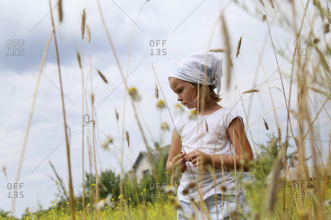 Image of a russian girl in a field before harvesting.