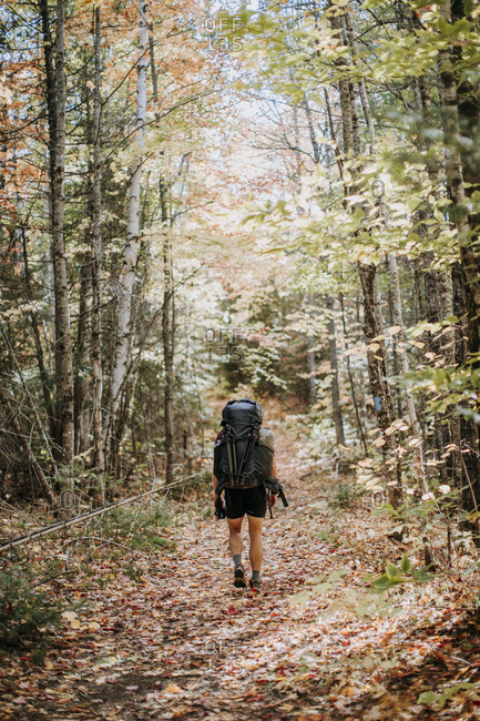 Man hikes with fully loaded pack down woodland trail in maine