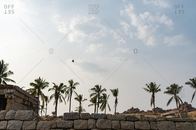 Palm trees surrounding granite temple complex ruins in the desert valley of Hampi, Karnataka, India