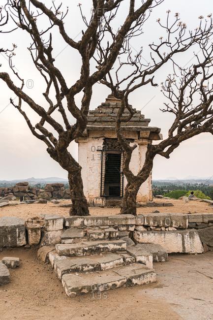 Trees and temple in ancient Virupaksha Temple complex in the Hampi region, Karnataka, India