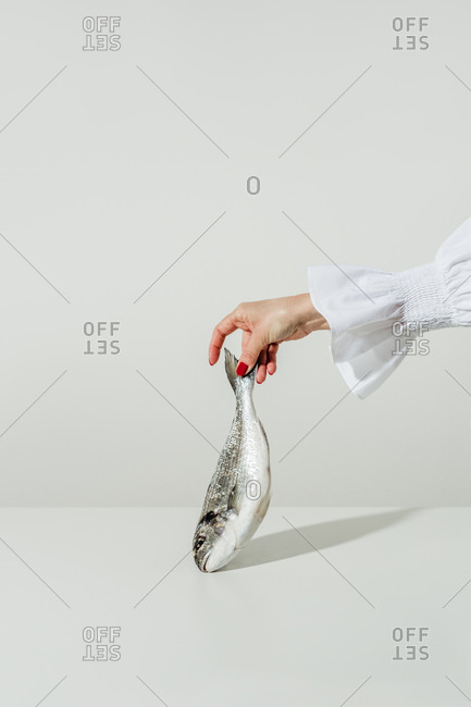 Female hand holding a whole fish on white background