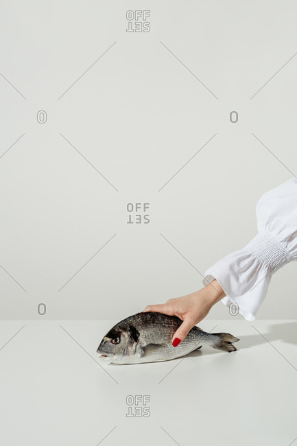 A woman's hand holding a whole fish on white background