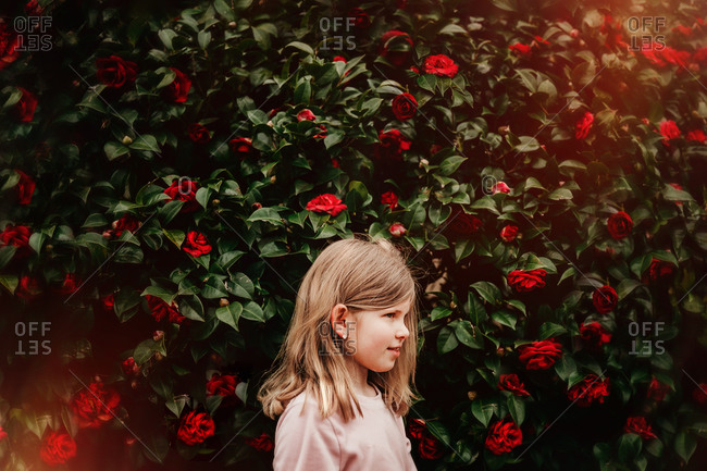 Portrait of a girl in front of a flower bush