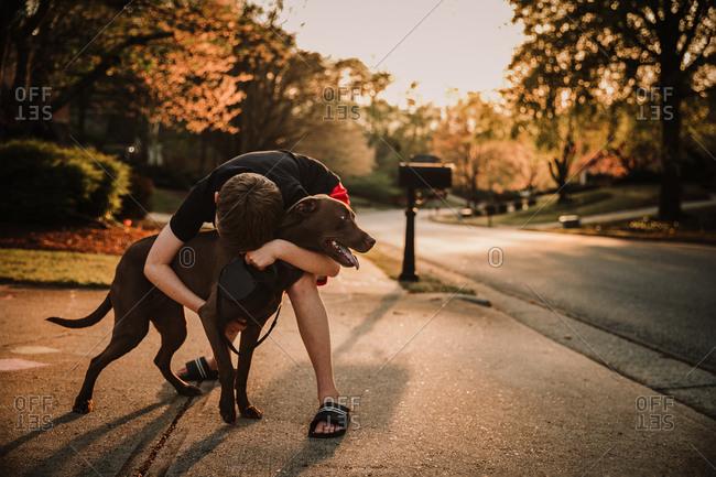Dog getting a hug on a walk from his boy