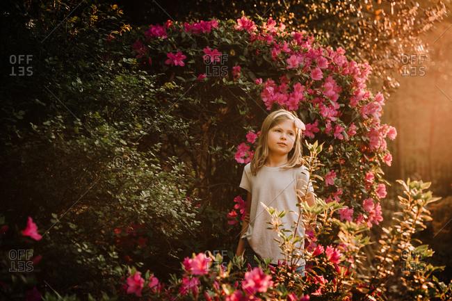 Young blonde girl standing among beautiful pink azaleas
