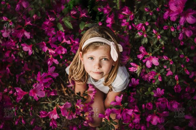 Overhead view of a sweet little girl in a azalea bush