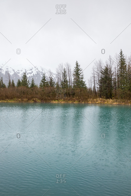 Blue mineral pond, pine forest and snowy mountain near portage, alaska