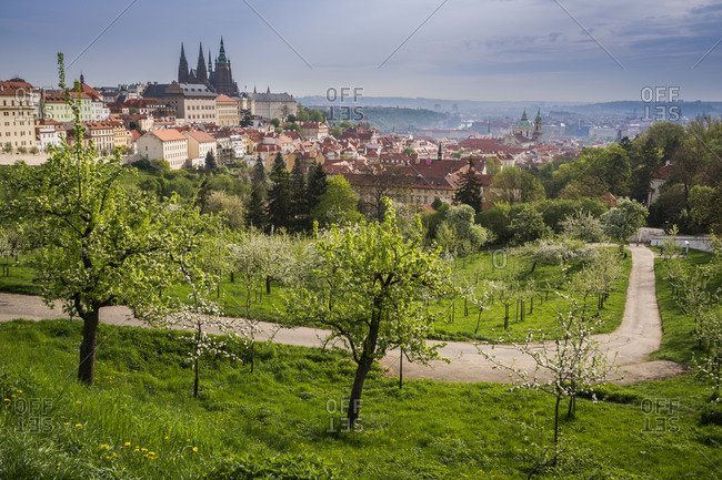 Prague castle in city against cloudy sky seen from park in spring, prague, bohemia, Czech republic