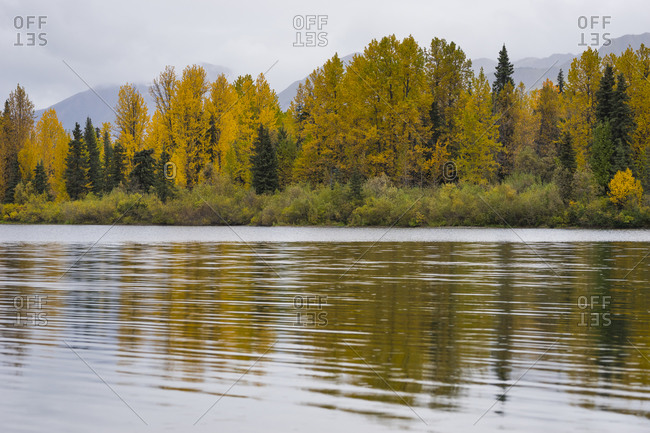 Scenic view of forest by tern lake against cloudy sky, kenai, alaska, usa