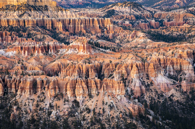 Bryce canyon surrounded by hoodoos, Bryce point, Bryce canyon national park, Utah, usa
