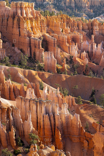 Detail of hoodoos and trees, sunset point, Bryce canyon national park, Utah, usa