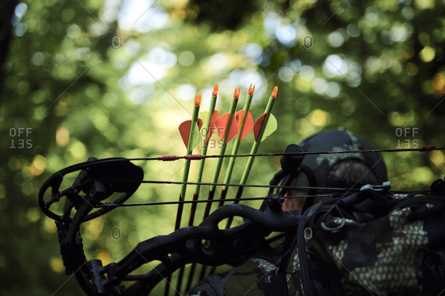 Bow and arrows - hunting in the appalachian mountains