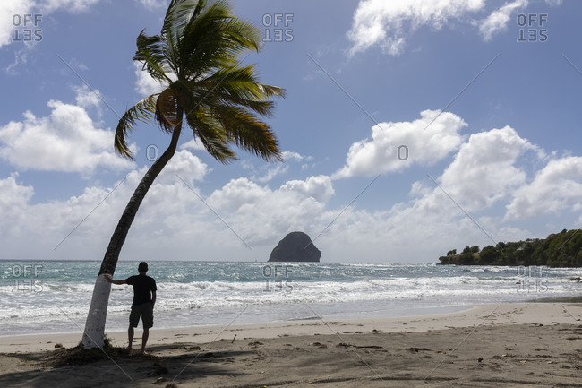Man silhouetted standing on beach with palm-trees in Martinique