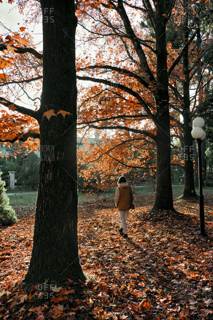 Woman walking in park at autumn time