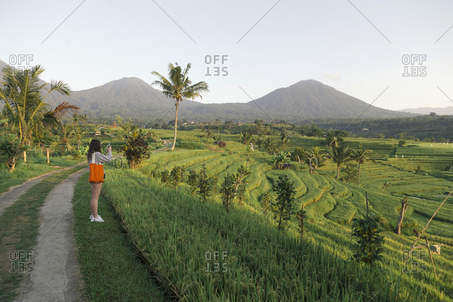 Young woman walking in rice fields