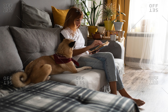 Dog owner resting with book on couch