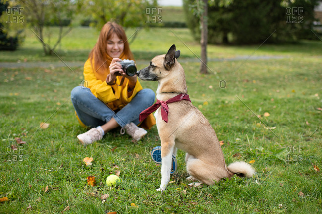 Young woman taking photos of dog with scarf