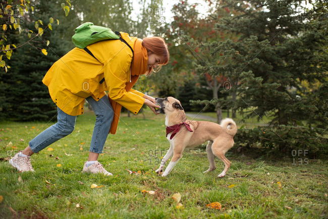 Cheerful lady playing with dog on autumn day