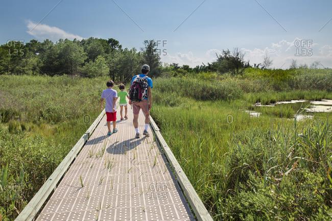 A father walks with children on boardwalk through wetlands in summer