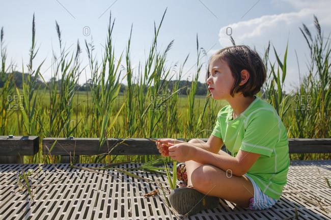 A cute little girl sits on boardwalk in wetlands by tall grass