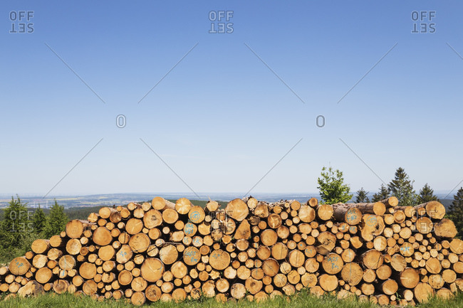 Stack of spruce logs lying outdoors