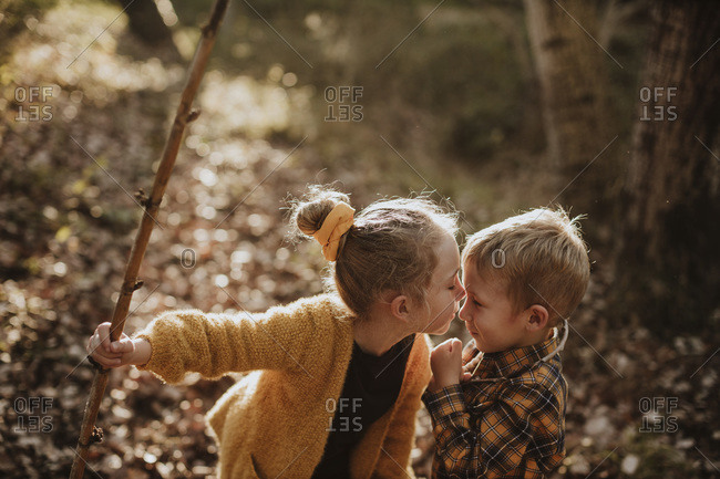 Sister holding stick while kissing brother in forest