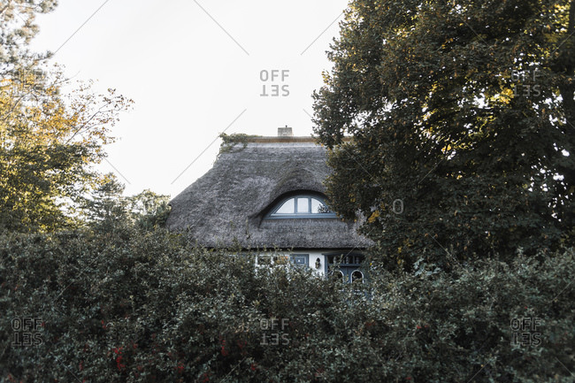 Thatched roof house behind bush fence against sky