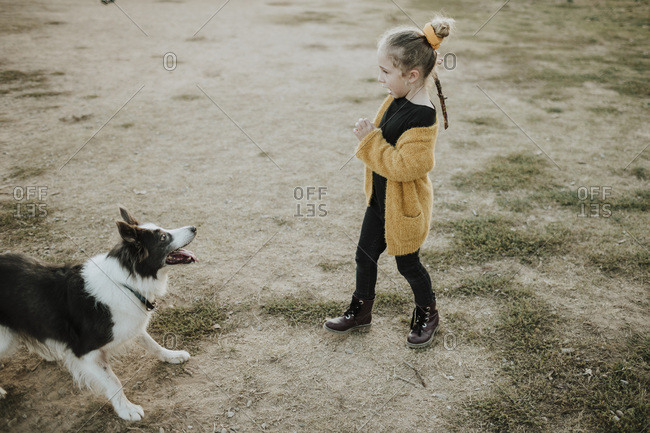 Girl holding stick while playing with dog on playground