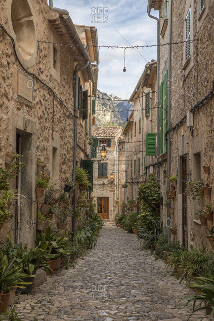Spain- Mallorca- Valldemossa- Potted plants placed along empty cobblestone alley