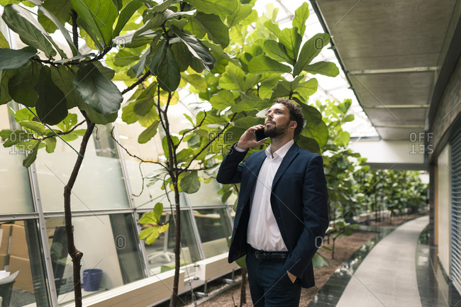 Businessman talking on mobile phone with hand in pocket by plants in office corridor