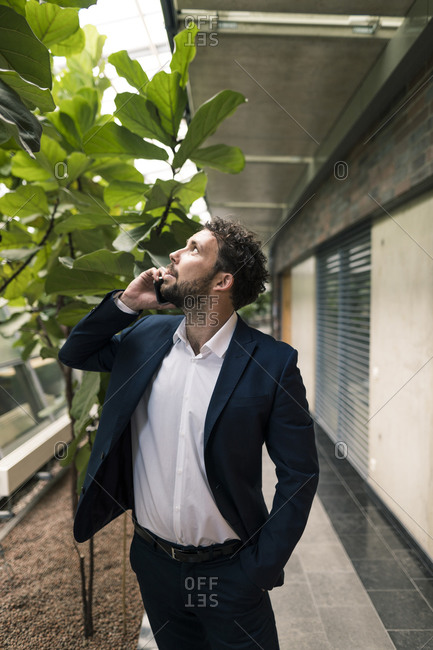 Male professional talking on mobile phone with hand in pocket while looking at plants in office corridor