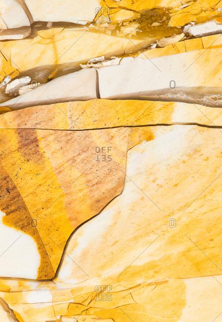 Macro photograph of a slab of polished Mookaite jasper from the Mooka Creek area of Western Australia.