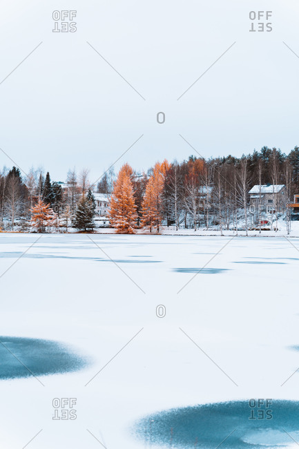 Spectacular scenery of frozen lake near village with residential houses located in woods in winter