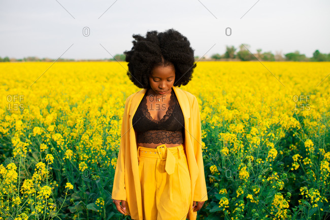 Pensive young African American female with curly hair dressed in black and yellow clothes looking down while standing amidst bright yellow flowers in blooming field