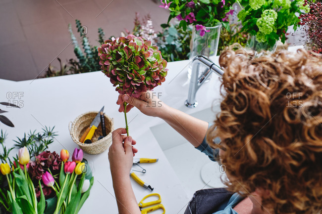 From above of crop unrecognizable female florist making bouquet from Hydrangea flowers while standing at table in flower shop