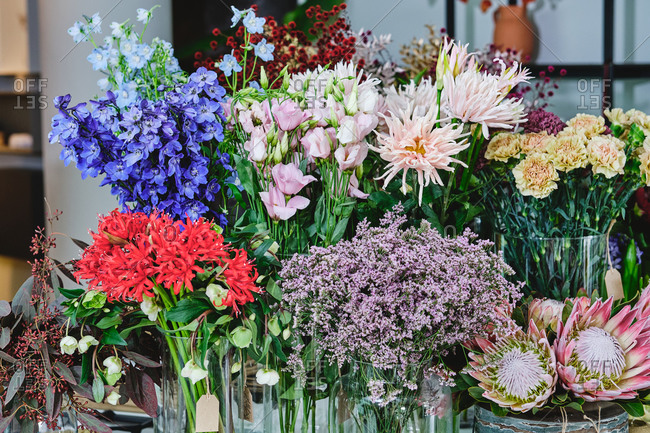 Colorful assorted flowers and plants in baskets and vases placed in spacious floral shop