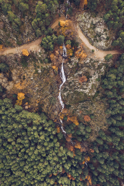 Spectacular drone view of river flowing through green woods on calm overcast day