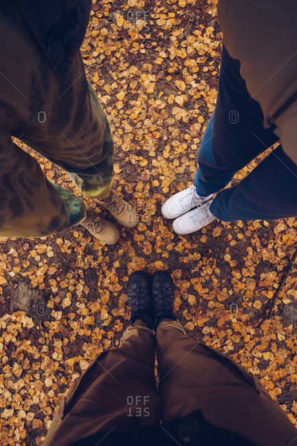 From above of crop unrecognizable travelers standing in woods on yellow fallen leaves during vacation