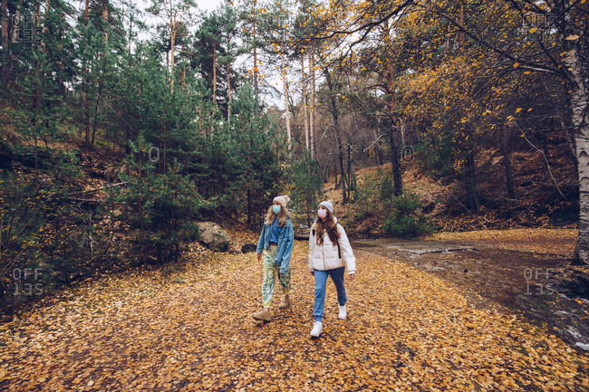Young female explorers with face masks walking in autumn woods near river during coronavirus pandemic