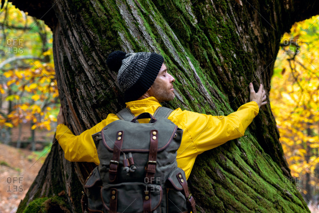 Back view of tranquil male traveler embracing tree trunk while standing in autumn woods with closed eyes