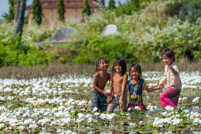 Water Lilly Pond, Kompong Thom, Cambodia - 29 December 2010: Local Cambodian Children Have Fun Picking Wild Water Lilies.